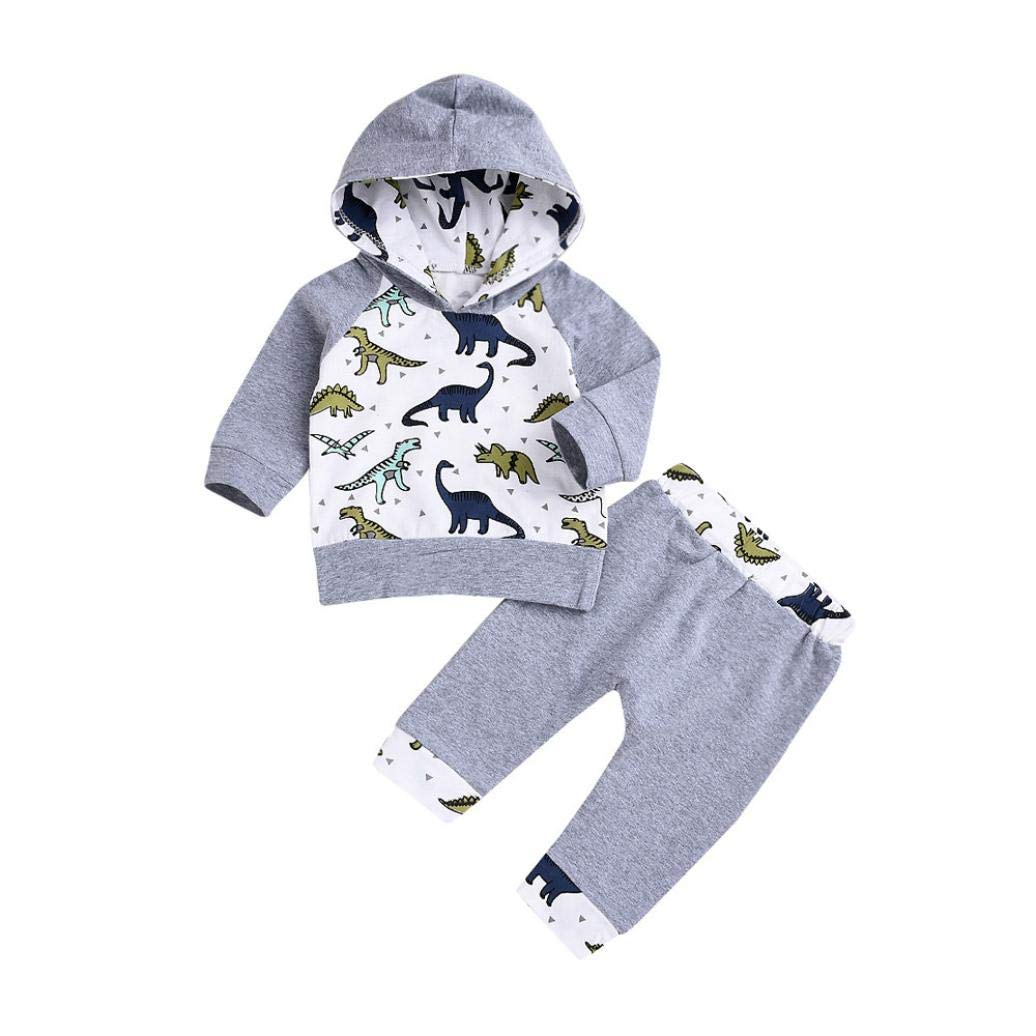 GoodLock Clearance!! Baby Boys Girls Clothes Set Infant Cartoon Dinosaur Hooded Tops Pullover Pants Outfits 2Pcs (Gray, 24 Months)