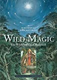 img - for Wild Magic: The Wildwood Tarot Workbook book / textbook / text book