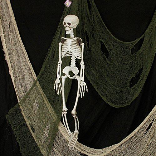 Halloween Haunters 3 Foot Hanging Full Body Skeleton Plastic Prop Decoration - Posable Joints, Scary Human Skull & Bones by Halloween Haunters (Image #1)