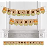 Big Dot of Happiness Pumpkin Patch - Fall Baby Shower Party Bunting Banner - Pumpkin Party Decorations - Welcome Baby