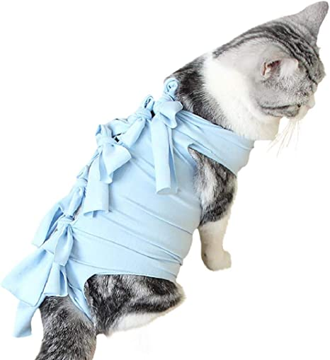 Nicolarisin Ropa Suave para cirugía de Gato Ropa médica para Mascotas Traje quirúrgico Gato Camisa Abrigo Chaleco Material Ambiental, Durable, Anti Lame y rasguño: Amazon.es: Productos para mascotas