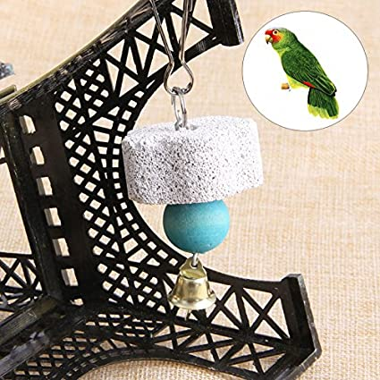 Amazon com: Bird Perch - Parrot Mouth Grinding Stone Molars Hanging