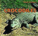 Crocodiles, Maddie Gibbs, 1448825946