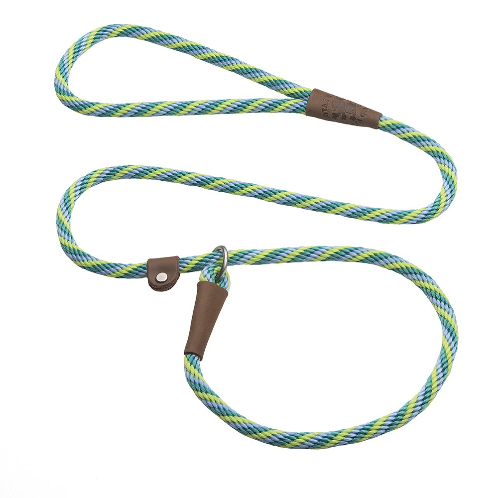 Mendota Products Dog Slip Lead, xs, Seafoam by Mendota Products