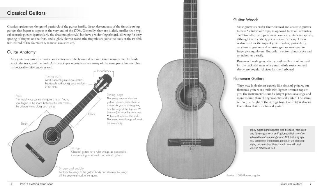 Playing Guitar (Idiot\'s Guides): David Hodge: 9781615644179: Amazon ...