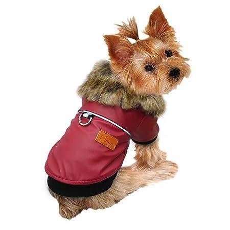 QPZYB Perro Mascota Ropa Chaqueta Pug Ropa Invierno Impermeable algodón Abrigo Ropa para pequeños Perros Medios Pitbull Yorkshire Ropa Cachorro: Amazon.es: ...