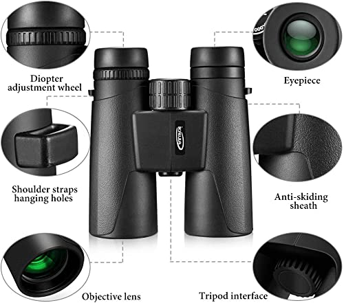 Compact Binoculars 10×42 with Low Light Night Vision Waterproof High Power Binoculars for Bird Watching Hunting Opera Concert Theater and Sport Games for Adults and Kids by IKALULA