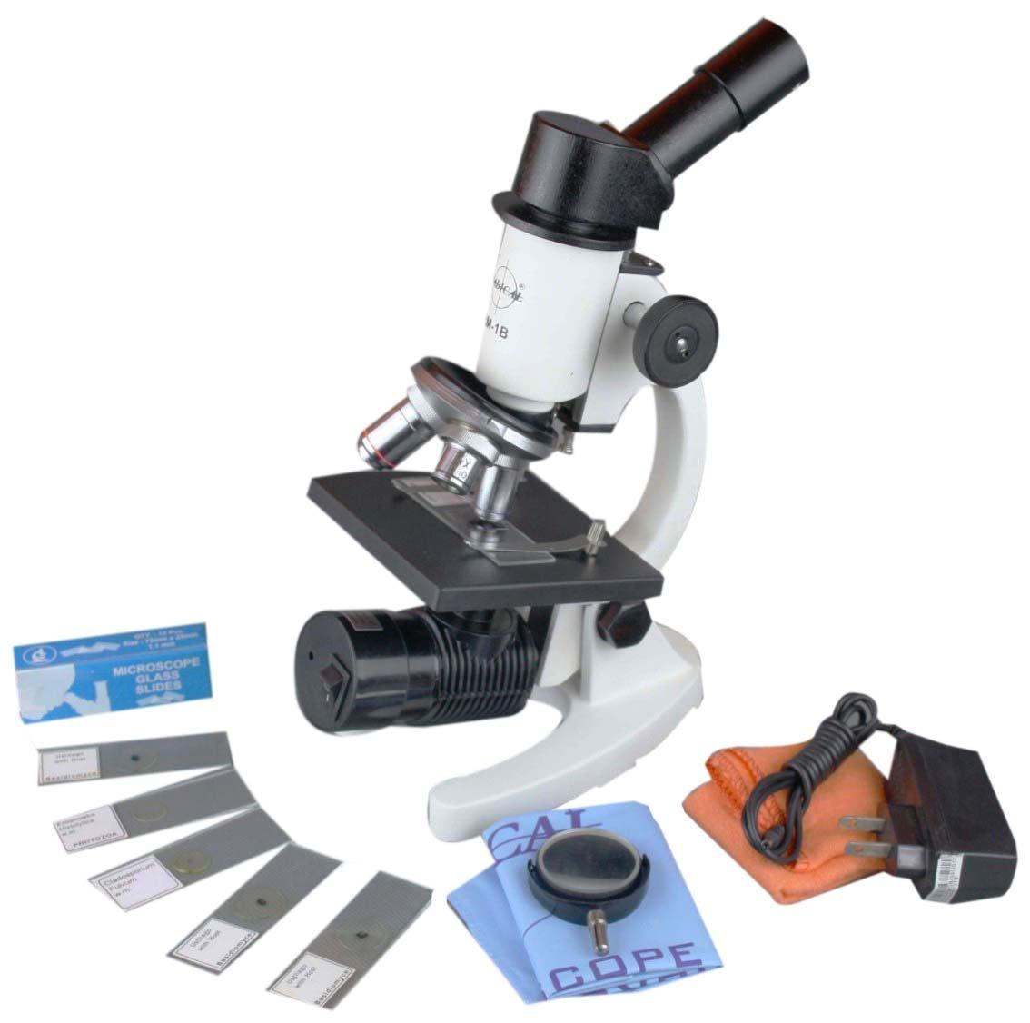 Radical 1000 x Compound Student Mikroskop w aufladbare Kabellose LED Lampe, 5 bereit und 12 Blanko Slide B014AZS1GK | Economy  | Deutschland Shops  | Kaufen Sie beruhigt und glücklich spielen