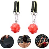 Climbing Pull Up Power Ball Hold Grips Climbing Solid Training Cannonball Bomb Ball for Straps for Finger, Forearm…