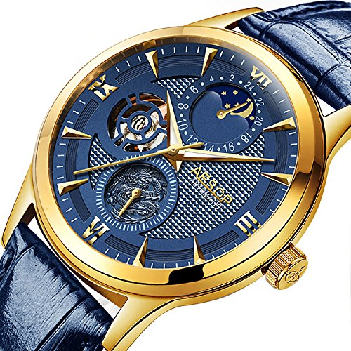 PASOY Mens Blue Watch 21 Jewel Automatic Movement 3D Dial Gilded Case Sapphire Tourbillon Sport ()