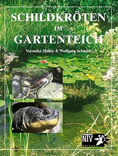 Schildkröten Im Gartenteich  NTV Garten