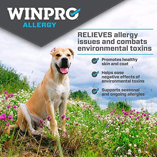 WINPRO All-Natural Allergy Relief Soft Chews for Dogs with Itchy, Scratchy Skin | Blood Protein Supplement for Healthy Skin and Coat, Made in USA, Grain Free, Member of NASC 4
