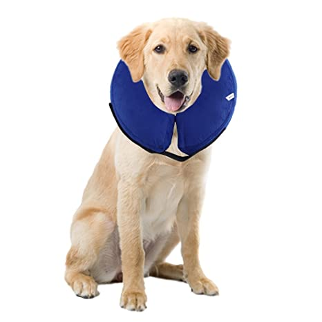 ALTERDJ Cómodo Perro Hinchable E-Collar Anti picaduras Cono Suave ...