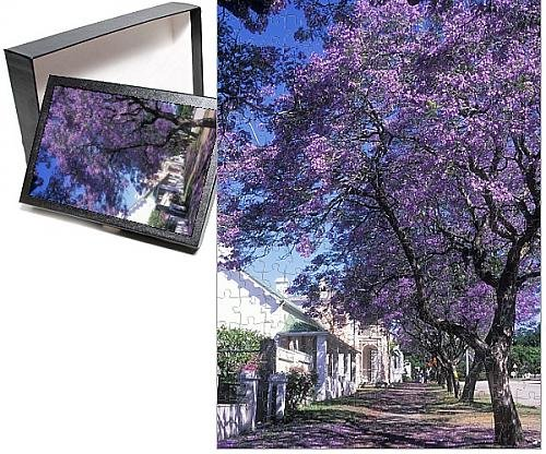 Photo Jigsaw Puzzle of ASW-4211 JACARANDA Tree - in blossom