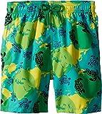 Vilebrequin Kids Boy's Mappemonde Dots Swim Trunk (Big Kids) Green 12 Years