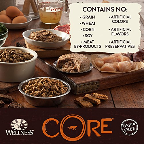 Wellness-CORE-Natural-Wet-Grain-Free-Canned-Dog-Food-Beef-Venison-Lamb-125-Ounce-Can-Pack-of-12