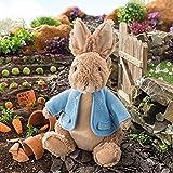 Beatrix Potter Plush Peter Rabbit (Large)