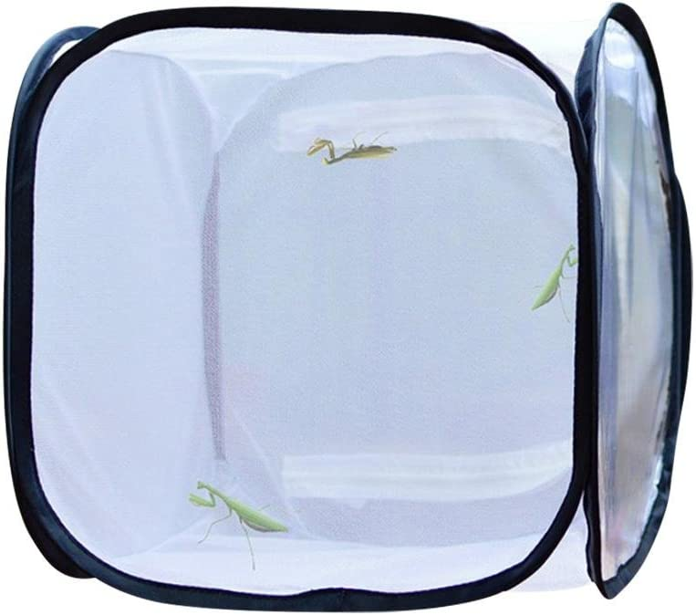 Butterfly Cage Pest Repellent Net Insekt und Schmetterling Lebensraum K/äfig Butterfly Pet Seedling Non-Opaque Collapsible Incubator Insect Cage Plant Cage