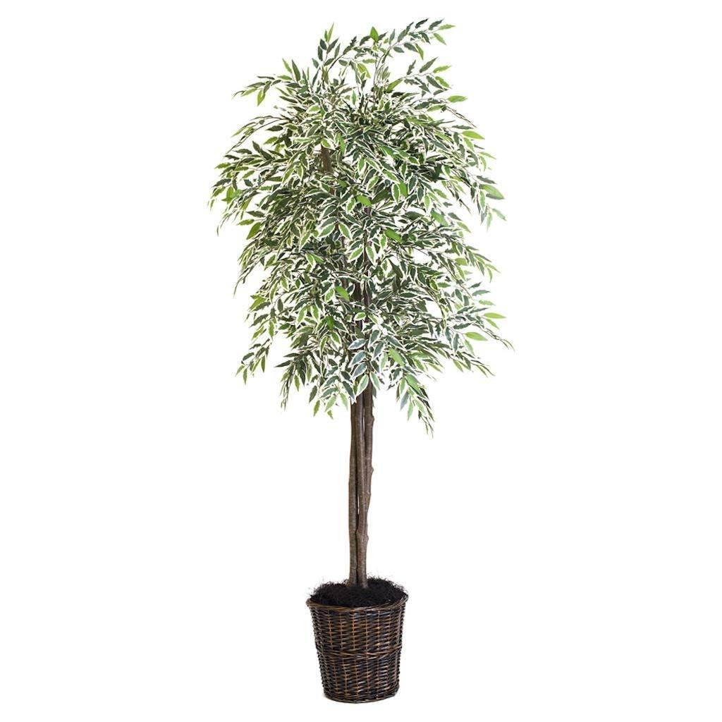 Vickerman TDX1365-07 Green Variegated Smilax Everyday Tree by Vickerman