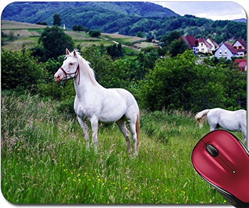 Liili Mousepad ID: 28981901 Beautiful white horse in a farm fields of Alsace -