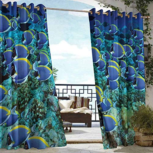 - DILITECK Outdoor Grommet Window Curtain Ocean School of Powder Blue Tang Fishes in The Coral Reef Maldives Deep Seas Waterproof Patio Door Panel W72 xL84 Aqua Blue and Yellow
