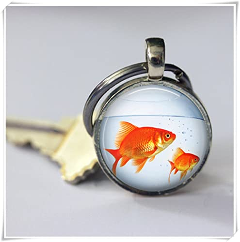 Amazon.com: Mágico imán pecera llavero oro tanque de peces ...