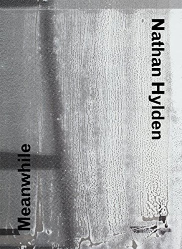Nathan Hylden: Meanwhile (English and German Edition) PDF