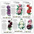 Peony Poppy Seed Packet Assortment (6 Individual Packets) Open Pollinated Seeds by Seed Needs