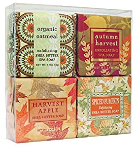 Earth Essence Soap Sampler - Boxed Set of 4 Assorted Scents