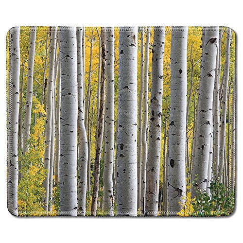 dealzEpic - Art Mousepad - Natural Rubber Mouse Pad Printed with Birch Tree Forest with Yellow Leaves - Stitched Edges - 9.5x7.9 inches