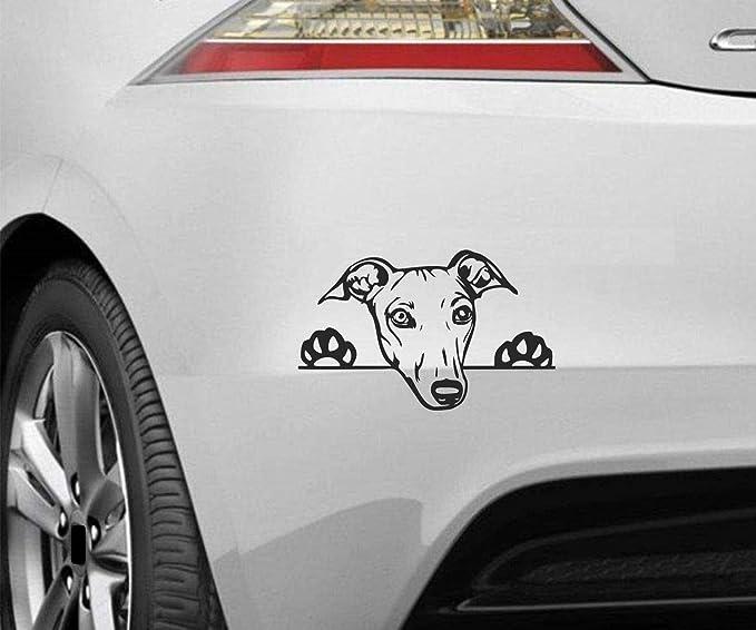 Myrockshirt Peeking Dog Spähender Hund Greyhound Windhund Ca 20cm Aufkleber Sticker Decal Autoaufkleber Uv Waschanlagenfest Profi Qualität Wandtattoo Auto