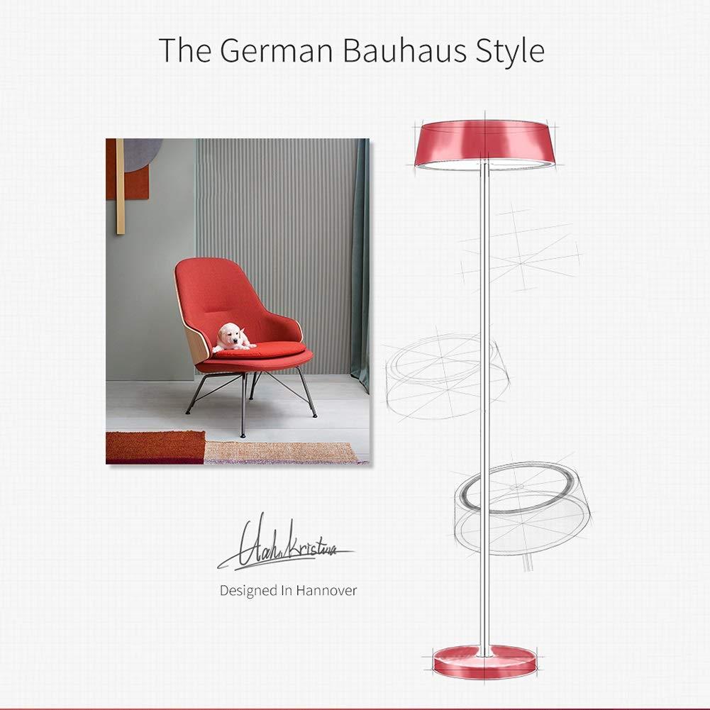 Amazon.com: AA- ✌LDD The Best Floor Lamp - Foot Switch ...