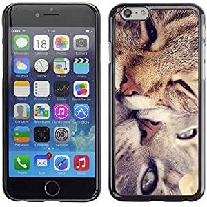 YOYO Slim PC / Aluminium Case Cover Armor Shell Portection //Cute Cat Friends //Apple Iphone 6 Plus 5.5