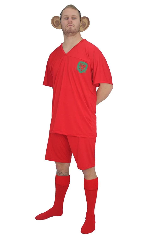 newest 8a4f5 a4fb9 Adults Welsh Football Icon Gareth Bale Kit Fancy Dress & Big ...