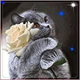 Swyss 5D Embroidery Paintings-DIY Diamond Painting Cross Stitch-Art Home Decor-Cat and Rose-30X30cm