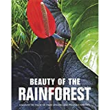 img - for Beauty of the Rainforest: Discover the Magic of These Amazing and Precious Habitats book / textbook / text book