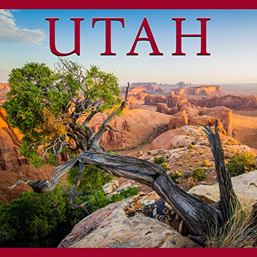 Like a beautiful palette for a mighty hand, Utah is a state defined by its colors. The coppery sandstone arches of the Capitol Reef, the ivory plains of the Great Salt Lake Desert, the cool green sanctuaries of Zion National Park. Immerse yourse...