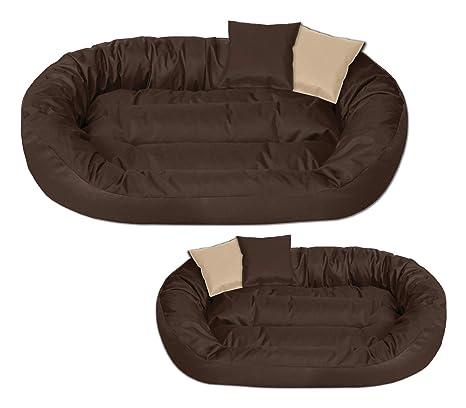 BedDog Sunny marrón XXXL Aprox. 150x120cm colchón para Perro, 13 Colores, Cama, sofá, Cesta para Perro