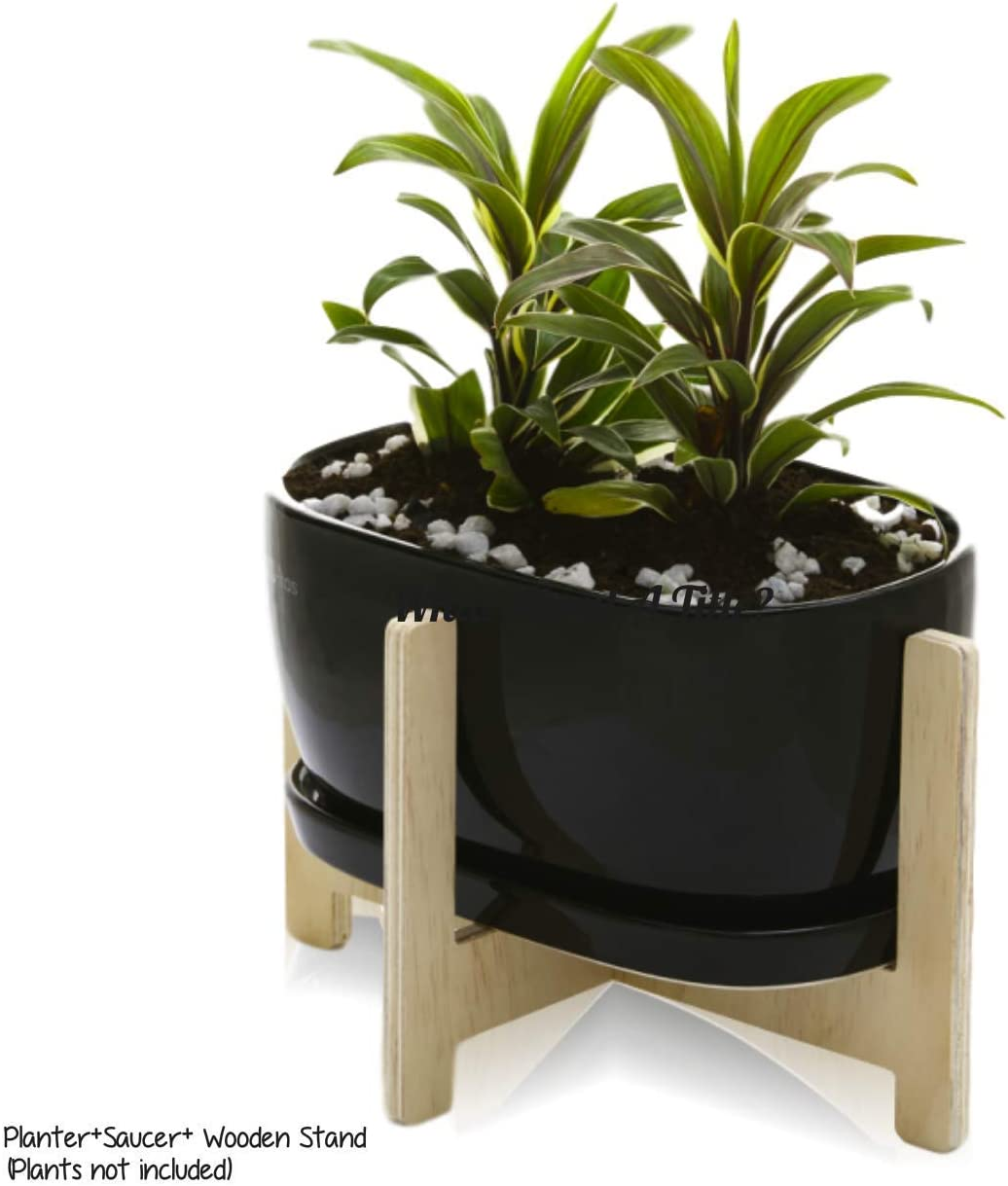 KOZitas Black 8.5 inch Oval Modern Minimalist Ceramic Succulent Plant Pots Indoor with Mid Century Plant Holder Stand Set for Flowers Herbs, Terrarium Cactus and Kitchen Decor. Gift Ready
