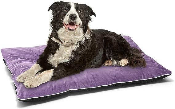 Amazon.com: AIPERRO - Colchón de terciopelo para cama de ...
