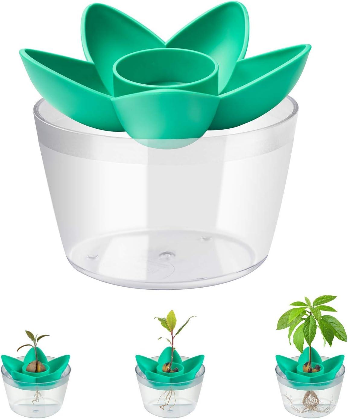 HENMI Tazón de Plantación de Semillas de Aguacate Kit,Planta tu Propio Arbol de Aguacate,Adecuado para Plantar Regalos de Semillas de Balcones Interiores de Jardín para Amigos (Sin semillas)
