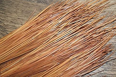 1lb Long Leaf Pine Needles for Basket Making, Crafting, Mat Weaving, Sculptural Weaving - Long Leaf Pine