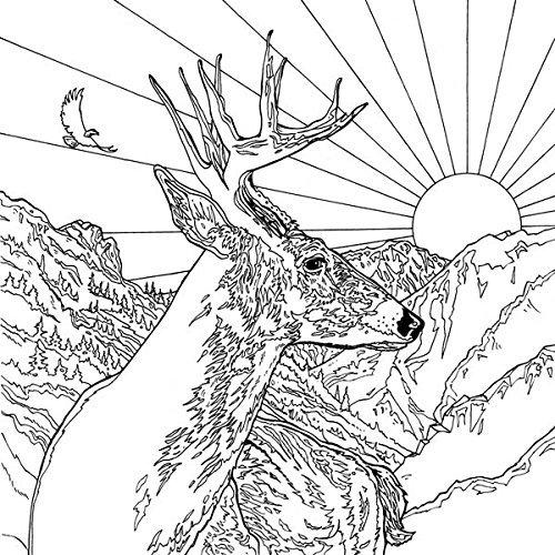 Legendary Landscapes Coloring Book Journey Witek Radomski Carrie Wong Al Sayers Kamala Melzack Ratbath Adrienne Drozdowski Anonymous 9780994881502