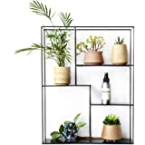 JQWJHJ Living Room Balcony Multi-wall Hanging Flower Stand Plant Wall Hanging Storage Rack
