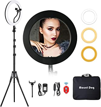 Ring Light with Stand and Phone Holder Lighting Kit for Live Stream Makeup Video Shooting Online Chat Two-Color Temperature Beauty Fill Light