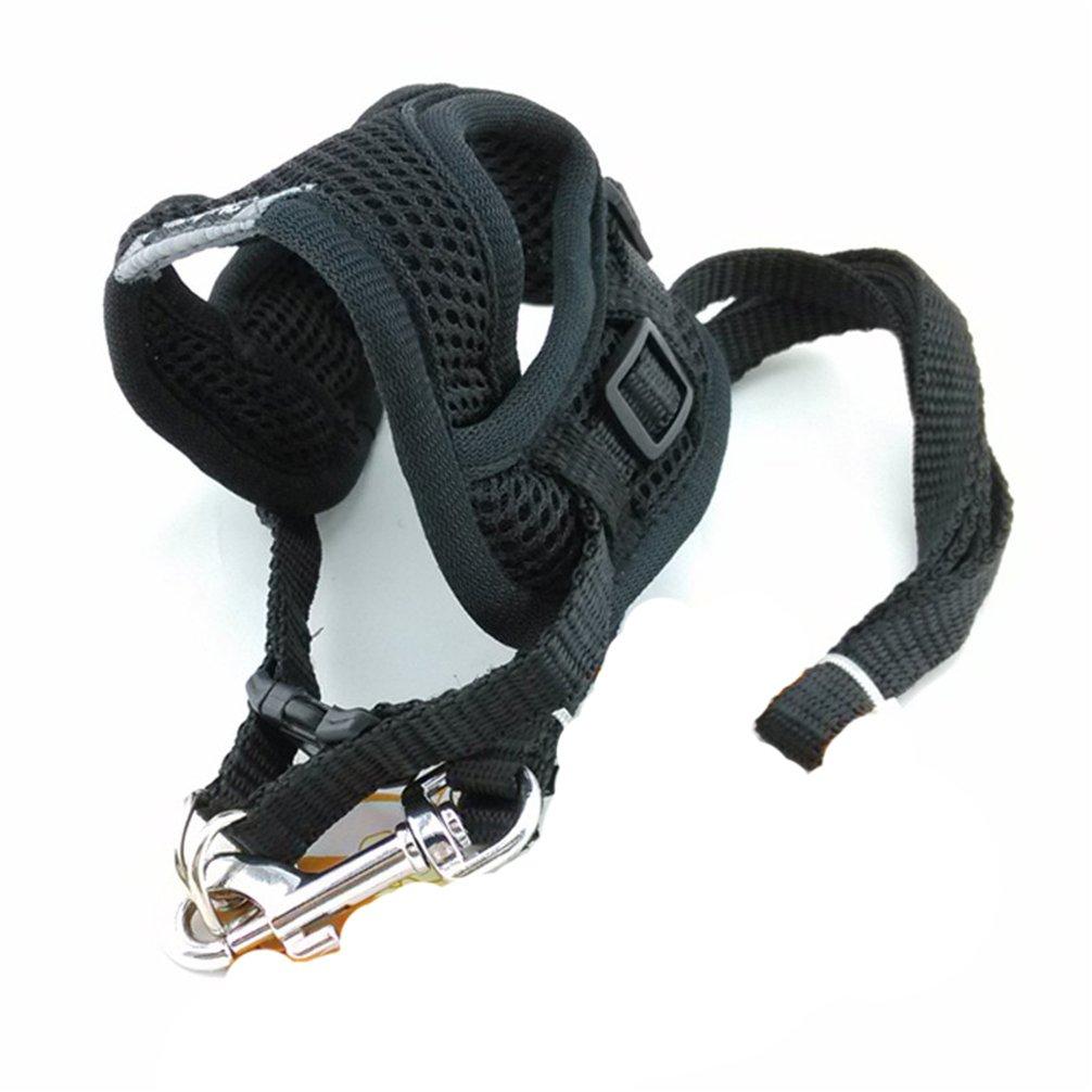 Amazon.com : Kuntrona Soft Breathable Mesh Small Dog Harness Vest Pet Supplies Chihuahua Yorkshire Nylon Leash Lead Collar Set arnes perro gato correa ...