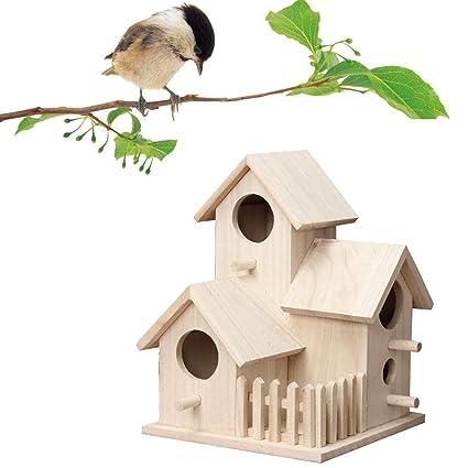 Amazon.com: Wooden Bird Houses - DIY Bird House Kit for Kids ... on sparrow computer designs, sparrow art designs, sparrow control,