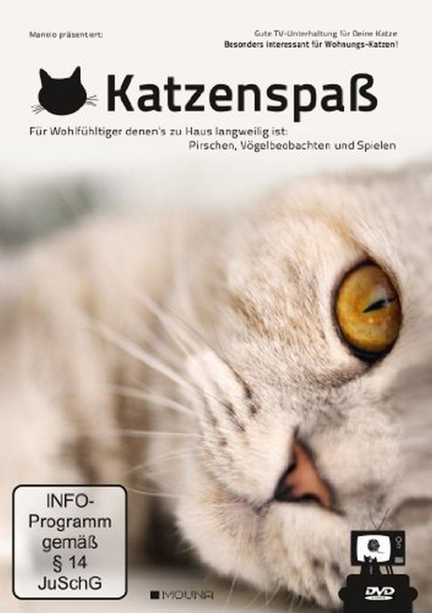 Fashion Cats Wähle deine Katzen aus!