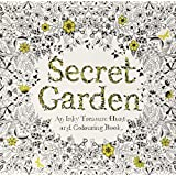 Z-COMFORT new perfect coloring book secret garden and time travel (2 pack) 1 Count