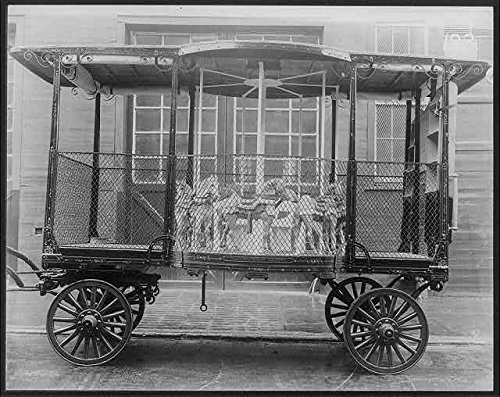 Photo: Merry-go-round in wagon manufactured by George B. Marx; Brooklyn,N.Y.,1920